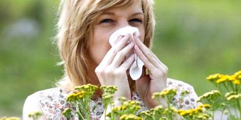 Allergiker sollten bei starkem Pollenflug zuhause bleiben