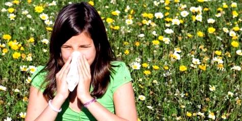 Pollen reizen Atemwege