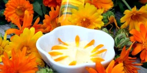 Ringelblumen-Creme gegen Ekzeme