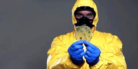 Ebola-Forscher