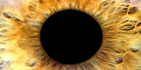 Mithilfe einer Irisdiagnose lassen sich Krankheiten diagnostizieren