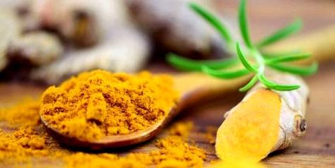 Kurkuma – der gelbe Ingwer