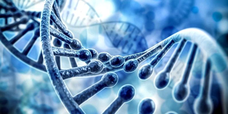 Genetik könnte eine Milien-Ursache sein