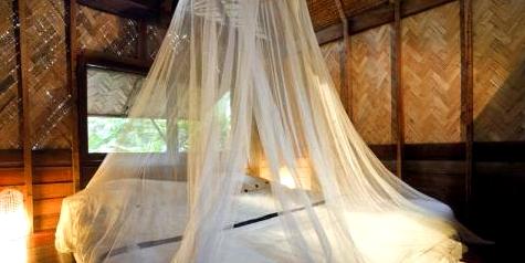 Moskitonetz gegen Mücken