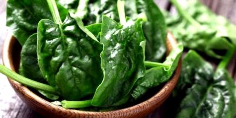 Eisenreiche Ernährung wichtig für Vegetarier