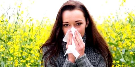 Im Frühling gibt es viele Pollen