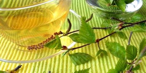 Birkenblättertee hilft, Wasseransammlungen auszuschwemmen