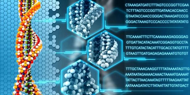 Mutationen von Zellen haben nicht zwangsläufig Auswirkung auf die Gesundheit