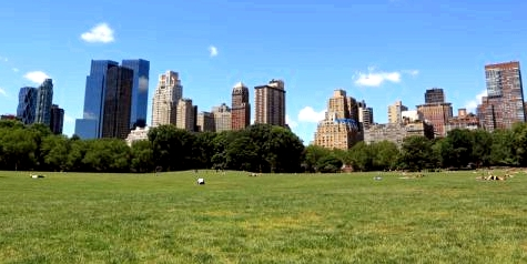 Grünflächen in der Stadt